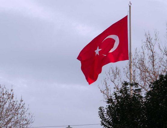 Türk Vatandaşlığı